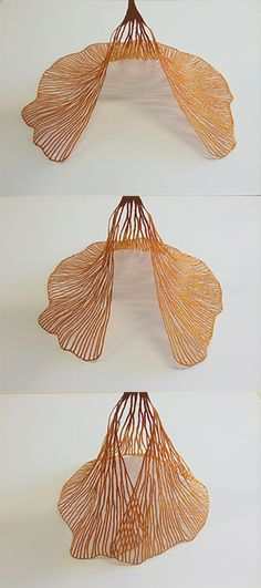 I love to play with my new work 'Ginko Biloba' it is such a great structure and when it's lifted and twisted it takes on a new life. Seems a shame to mount it flat for framing … Meredith Woolnough