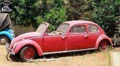 Rust Buckets...