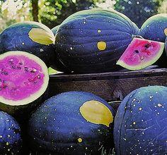 I used to grow Moon & Stars watermelons. Magic-lookin' things.