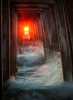Sunset in Naples Pier, Florida, United States - Titled: Delighted taken by Ingo Meckmann Naples Pier, Naples Florida, Beautiful Sunset, Beautiful Beaches, Beautiful Things, Cool Pictures, Cool Photos, Nature Pictures, Sunshine State
