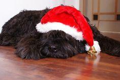 Traumzaubereien: Frohe Weihnachten