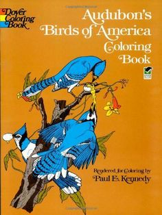 Audubon's Birds of America Coloring Book by John James Audubon, http://www.amazon.com/dp/048623049X/ref=cm_sw_r_pi_dp_nePMqb1J33071