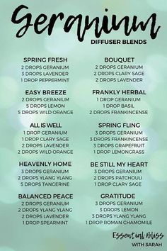 oil recipes Diffuser blend suggestions using dōTERRA Geranium essential oil Diffuser mix recommendations using DōTERRA Geranium essential oil to. is # dōTERRA Helichrysum Essential Oil, Geranium Essential Oil, Geranium Oil, Doterra Geranium, Essential Oil Uses, Knee Pain Relief, Stress Relief, Diffuser Recipes, Essential Oil Blends