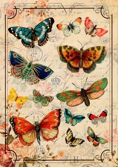 Butterfly Vintage neo retro Plants Paris animals por SoulArtCorner vintage Retro Home Decor Decoupage Vintage, Decoupage Paper, Vintage Paper, Illustration Papillon, Butterfly Illustration, Butterfly Images, Butterfly Art, Butterfly Template, Crown Template