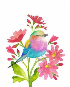 Watercolour Art Print, Gouache Painting, Bird Print, Lilac-breasted Roller Wall…