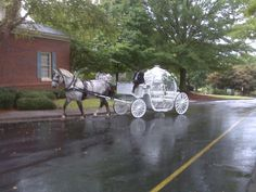 Carriage for Hire Cinderella Weddings and Events