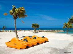 Pedal boats in Bermuda? Sounds like a great afternoon to us, what do you think? barretttravel.globaltravel.com pamelabarrett22@gmail.com