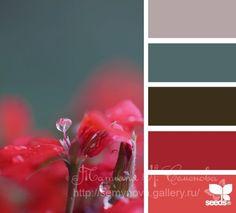 Gallery.ru / Фото #104 - сочетание цвета оттенки желтого и оранжевого - semynova