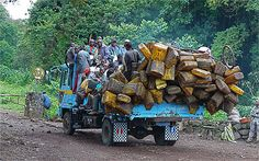 Harvesting palm oil  Cans are empty, the truck is full ... ready for pick up in the forest of palm oil, which is then found in the markets of Bukavu.