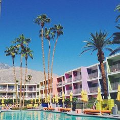 The Saguaro Hotel Palm Springs California USA  #thesaguaro #saguaropalmsprings #pool #sun #palmsprings #desert #california #californialove #USA