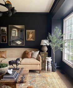 Home Living Room, Living Room Designs, Living Room Decor, Living Spaces, Living Room With Rug, Bookcase In Living Room, Small Living, Modern Living, Green Living Room Walls