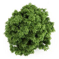 248 fantastiche immagini su psd photoshop piante e grafici for Progettazione mobili 3d