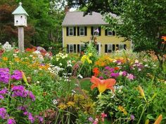 images about Garden love on Pinterest Moss Garden