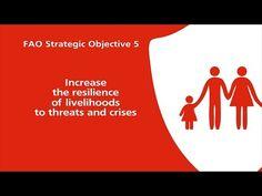 Incrementar la resiliencia de los medios de vida ante las amenazas y crisis  FAO   Organización de las Naciones Unidas para la Alimentación y la Agricultura