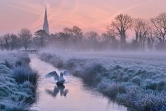 Salisbury Water Meadows by Andreas Jones, via 500px