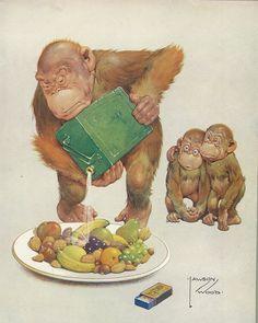 Лучших изображений доски «Принnы обезьян»  248   Monkey art, Monkeys ... c68fee21be1