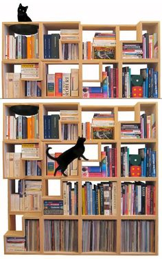 Cat Playground and Modular Bookcase  Born from a passion for reading and for…cats, The Cat Library was designed by Corentin Dombrecht and can be adapted to various interiors. A subtle stair systems make this shelving unit feline-friendly and visually intriguing. Simple, functional and fun!
