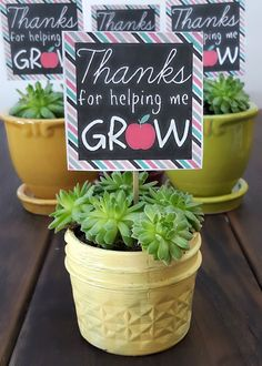 "A succulent plant with a printable label, ""Thanks for helping me grow."" Teacher appreciation is right around the corner and each year we look to create something special to say thank you for all that they do.  We have been painting mason jars recently and planting little succulent plants inside.  After creating these mason jar …"