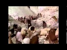 ANCIENT GIANTS existed   Best Full Documentary HD Published on Nov 17, 2013