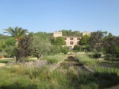 The magnificent gardens leading up to Castell Son Claret Luxury Hotel and Spa Spa, Gardens, Mansions, Luxury, House Styles, Places, Villas, Palaces, Tuin