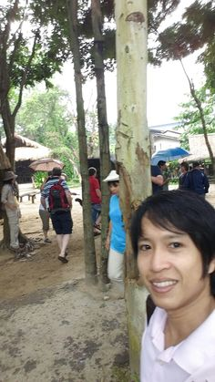 Chiang Mai Elephant, Elephant Camp