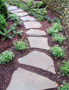 Superb stepping stones on mulch for your cozy home