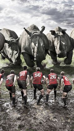 750x1334 Wallpaper rugby, team, rhinos, dirt, field