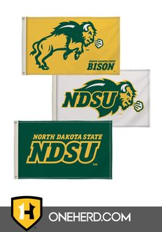 Bundle 2 Items NCAA North Dakota State NDSU Bison 1 Plastic License Plate Frame /& 1 Thin Plastic License Plate
