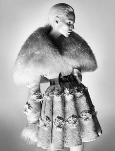Alexander McQueen's Fall 2012 Campaign   Suvi Koponen by David Sims