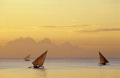 West Coast, Zanzibar, Africa - Zanzibar Sailing by Ian Cameron Zanzibar Africa, All About Water, Row Row Your Boat, West Coast, Kayaking, Sailing, Travel Destinations, Places To Visit, Ocean