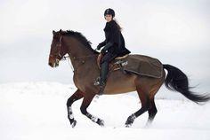 Gallop in the snow