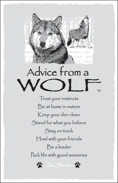 Advice from a Wolf Frameable Art Postcard
