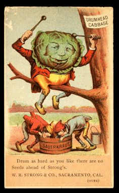 R.W. Strong & Co. / antique cabbage seed advertisement