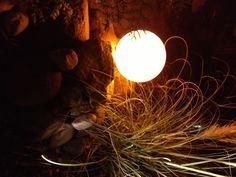 Filigranes Pampasgras im samtigen Lichtschleier der Kugelleuchte. Die Kombination Gräser und Licht verspricht zauberhafte Lichtspiele.