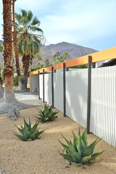 Corrugated metal fence - love how this is framed out.  Gives it a very clean and modern look.