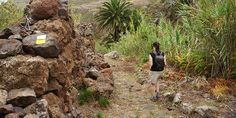 Interested in walking in the Canary Islands? Here's Rodrigo's top 5 unmissable things about walking in Tenerife Walking Holiday, Canary Islands, Tenerife, Hiking Boots, Top, Camino De Santiago, Teneriffe, Crop Shirt, Shirts
