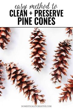 How To Clean and Preserve Pine Cones I had no idea you could preserve pine cones you find in your yard for crafts! Christmas Pine Cones, Diy Christmas Garland, Cabin Christmas, Cowboy Christmas, Primitive Christmas, Rustic Christmas, Primitive Crafts, Pinecone Christmas Crafts, Christmas Trees