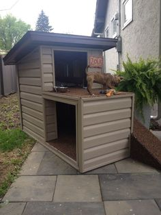 2 story dog house with a top patio and ramp access .