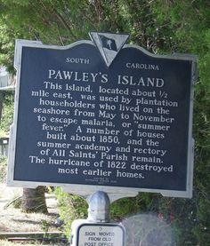 .Pawley's Island