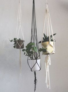 Urban Jungle Bloggers: Hanging planters
