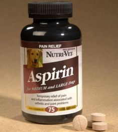 Can You Give Your Dog Aspirin For Arthritis