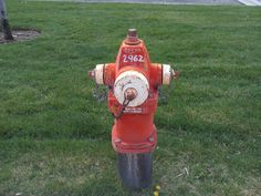 PT 90 TREASURE VALLEY FIRE HYDRANT 2962 JULY 15