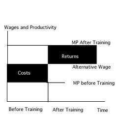 "One suggestion for employee retention is to offer pay increases once internal training is completed. This theory suggests specific human capital involves shared investments and shared returns by employers."" Sharing may serve to change relations between employers and employees in a number of ways, giving each a longer term outlook."" #wk11HRPhilosophy #meredithmatzkin #500_11 http://faculty.washington.edu/jacoby/BLS345/%20HCtutorial.html"