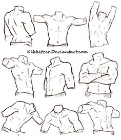 Male Torso Reference Sheet by Kibbitzer.deviantart.com on @DeviantArt