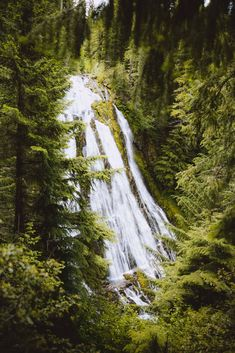 An Oregon road trip is one of the coolest ways to visit the Pacific Northwest! From raging waterfalls, gorgeous coastline, vast deserts, and hidden hot springs, there is something for everyone to do in Oregon! Save this post for your next PNW road trip, and download our free Oregon road trip itinerary too! #themandagies #oregon #roadtrip #PNW #oregonroadtrip #oregoncoast Oregon Road Trip, Oregon Travel, Oregon Landscape, Southern Oregon Coast, Ecola State Park, Oregon Waterfalls, Pacific Northwest, Pacific Coast, Cannon Beach