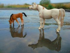 arabian mare and foal-schleich