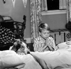 Lassie and Timmy-I loved this show! I actually got to meet Timmy.