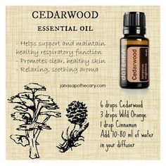 Cedarwood essential oil benefits and diffuser blend www.onedoterracommunity.com https://www.facebook.com/#!/OneDoterraCommunity
