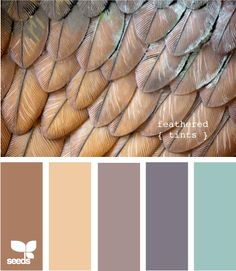 feathered tints, love!