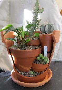 Miniature garden in broken pots Succulent Pots, Cacti And Succulents, Planting Succulents, Broken Pot Garden, Garden Pots, Garden Spaces, Pot Jardin, Succulents In Containers, Cactus Y Suculentas